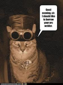 Look guys, it's Christopher Daniels' cat!