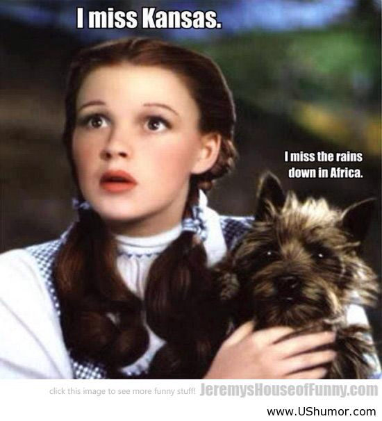 I miss making Toto references