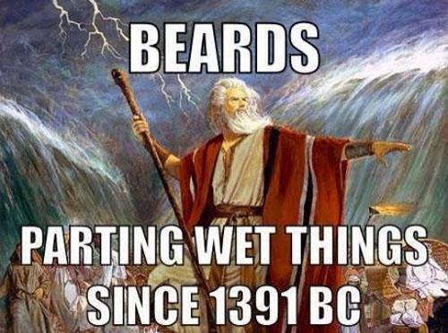 #Beardfacts